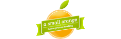 A Small Orange Logo